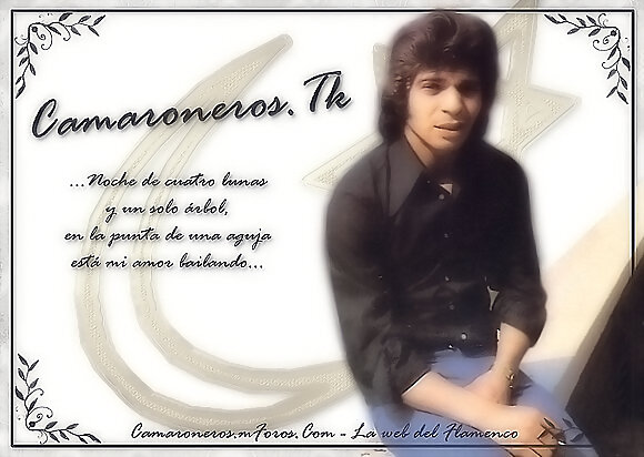 Wallpaper Camaroneros.Tk (12)