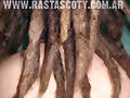 dreadlocks to fix dreads reggae picture,photos