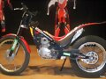 MONTESA COTA REPSOL 4RT.